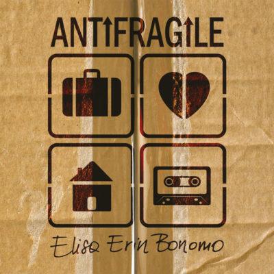 copertina_antifragile_dig